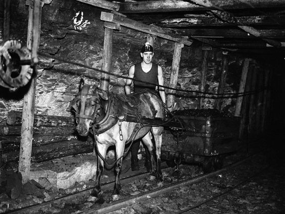 How exactly are science skills used in a Coal Miners every day life?