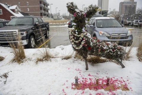 Peaceful memorial rally in Ann Arbor honors lives of 63 deer killed | MLive.com