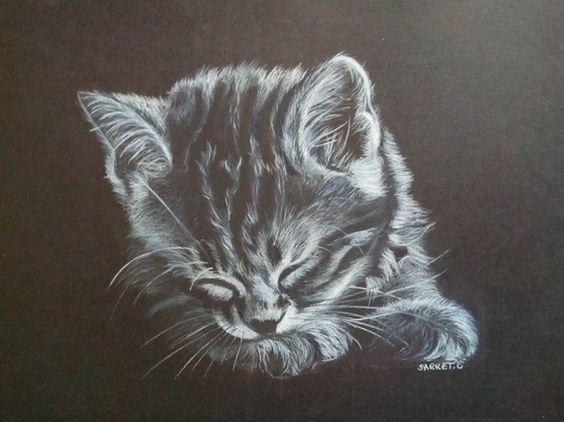 Dessin noir et blanc d 39 un chaton dormant paisiblement - Dessin noir blanc ...