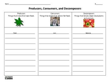 producers consumers decomposers graphic organizer graphic organizers graphics and organizers. Black Bedroom Furniture Sets. Home Design Ideas