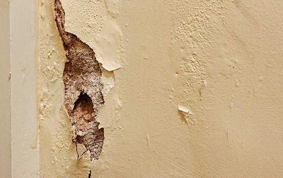 Comment Isoler Un Mur Humide Isolation Mur Comment Isoler Un Mur Et Humidite Mur