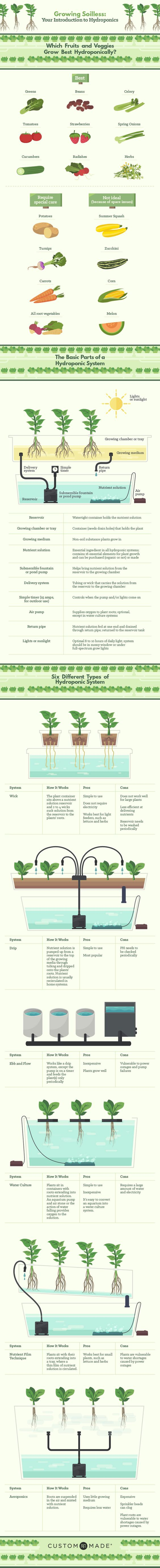 Growing Soilless: Your Introduction to Hydroponics.  http://www.custommade.com/blog/introduction-to-hydroponics/