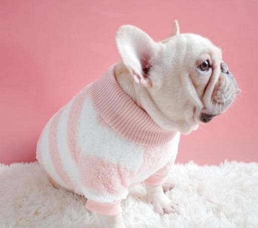 Striped Turtleneck Dog Sweater Baby Animals Cute Animals Cute