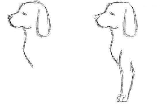 Auf Diese Seite Erkenne Sie Wie Kann Man Selber Sehr Schnell Einen Hund Einfach Zeichnen Di Einfach Zeichnen Hund Einfach Zeichnen Zeichnen Bleistift Einfach