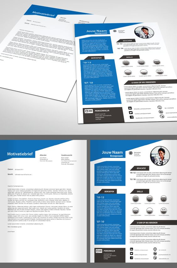 premium cv 219  1 pagina cv en sollicitatiebrief  gebruik