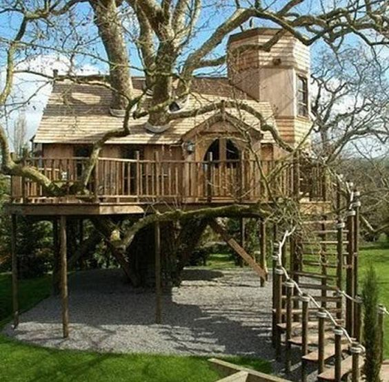 Artistry And Innovation- Incredible Tree Houses - Jungle Magazine