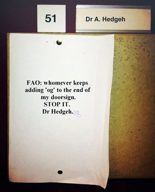 This displeases Dr. Hedgehog.