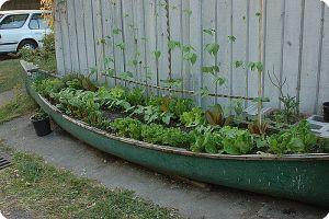 Tend to your garden canoe!
