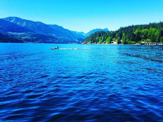 Instagram - @lawrengravy - First sea swim of the year!  #gambierisland #straightoffthedock