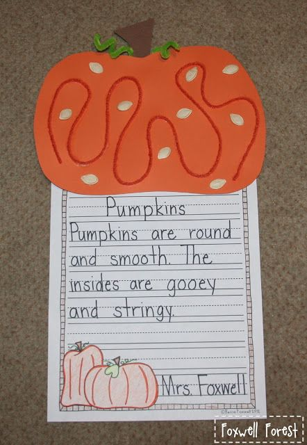Please help me with this essay I have to write about the origins of the Pumpkin?