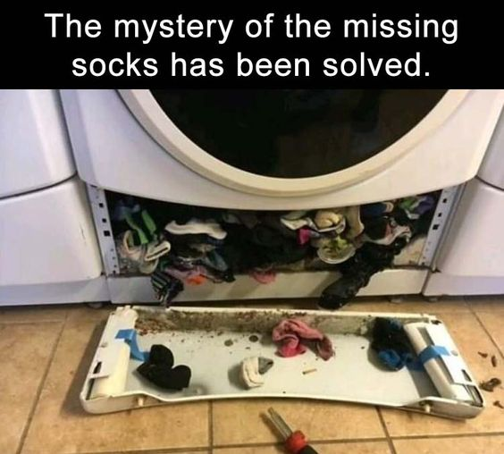 Funny Pictures Of The Day – 32 Pics | Funny Pictures ...