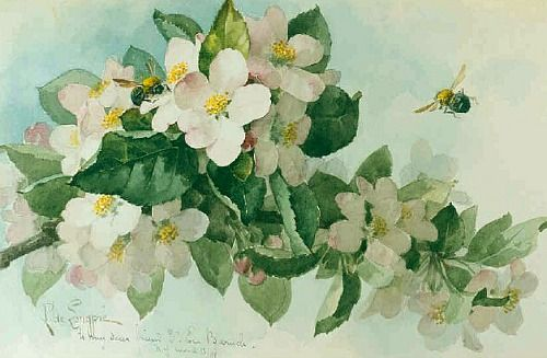 stilllifequickheart:  Paul de Longpre Apple Blossoms with Bumblebees 1899