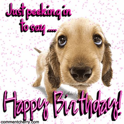 Pinterest The Worlds Catalog Of Ideas Jpg 400x400 Happy Birthday Wishes And Dogs