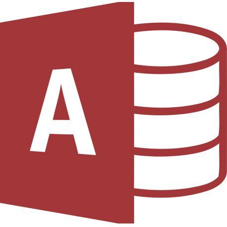 Cette formation permet aux apprenants de maîtriser la nouvelle interface et les nouvelles fonctionnalités du logiciel Microsoft Access 2013.