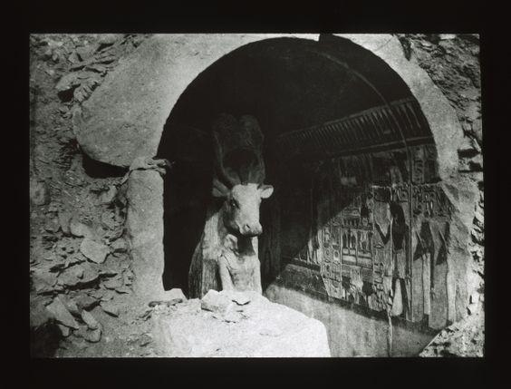 Hathor cow, Deir El-Bahri, dynasty 18