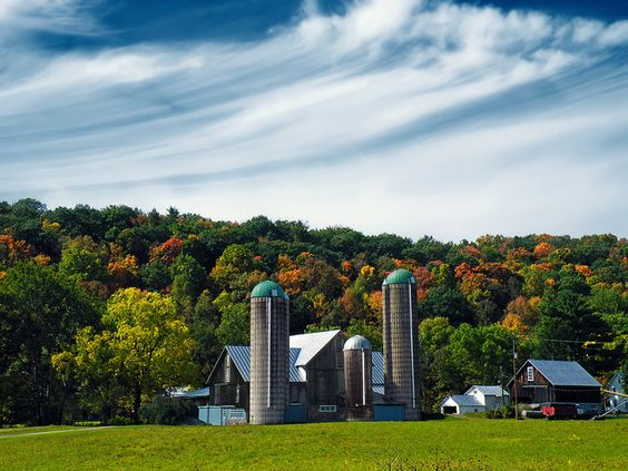 10. Pennsylvania is home to tons of farms, meaning that many of the people who live here contribute to the agriculture that nourishes our…