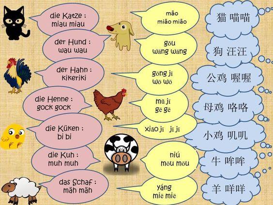 Chinesisch lernen mit Spaß - Tiere & Tierlaute  #Chinesisch #China #Tiere #Tierlaute #Lernen #Vokabeln