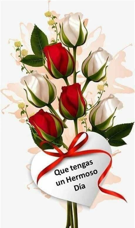 Pin De Ana Gladys Rojas En Saludos Y Mas Saludos De Buenos Dias Buenos Días Saludos Saludos D Buenos Dias