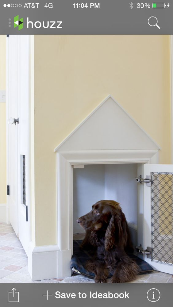 Clever idea for puppy