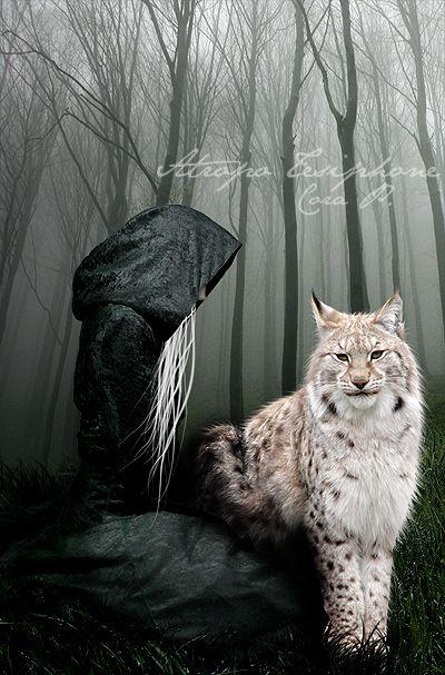 Lynx. by ~AtropoTesiphone on deviantART