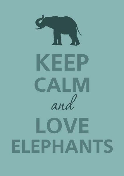 Embracing the Elephant in the Room [My Heart for Psychotherapy]
