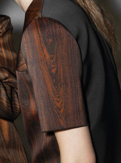 Céline fall 2011  Amazing picture, when I first looked at it it looked like a piece of wood