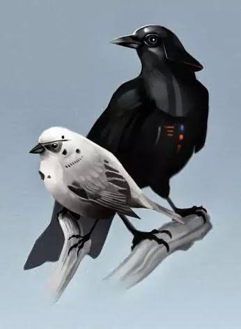 Starwars Birds