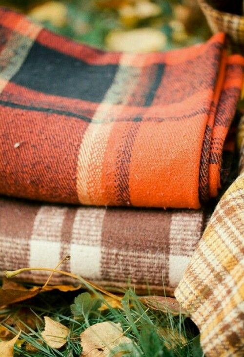 autumn, blanket, and fall kép