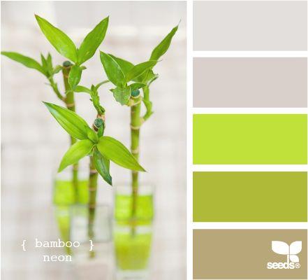 bamboo greens: