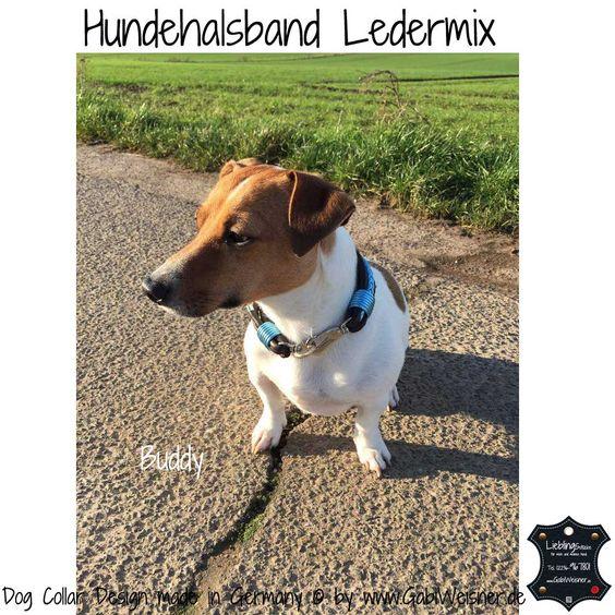 Hundehalsband Ledermix mit passender Leine