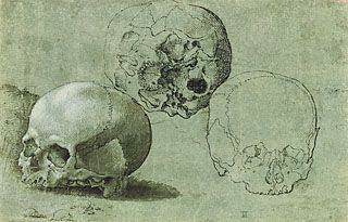 Study of Three Skulls (recto); Architectural Study (verso) (Getty Museum)