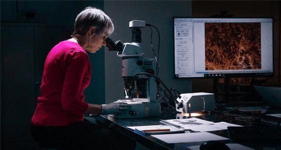 La gran estafa de los manuscritos de la Biblia del mar Muerto