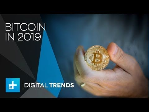 cryptocurrency investment trends