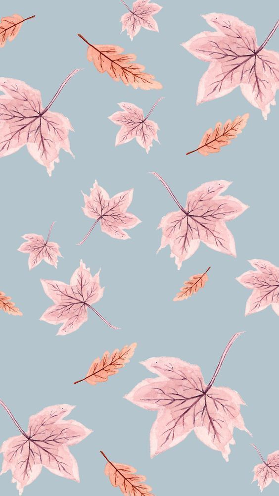 Nice Wallpapers For Iphone Hd