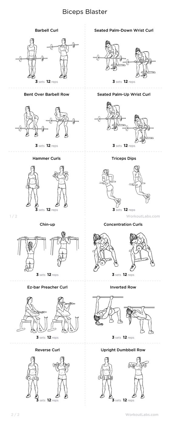 Biceps Blaster Workout