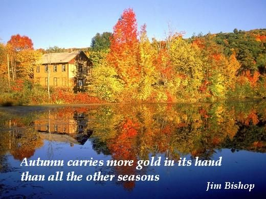 Autum Pictures And Quotes | Falling For Autumn Quotes. | Happenings Of The  Harper Household