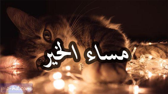 صور مساء الخير صور مكتوب عليها مساء الخير Pics Image Poster