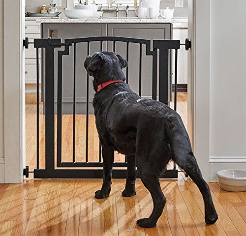 Orvis Wrought Iron Door Frame Gate Doorway Be Sure To Check Out This Awesome Product This Is An Affiliate Link Dog Gate Wrought Iron Doors Iron Doors