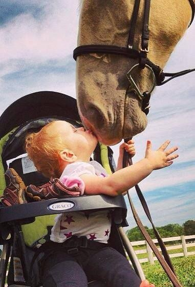 Oh, I love this, it would have been me, even if it were the first horse I ever saw!  Look at the child pulling the horse down to kiss