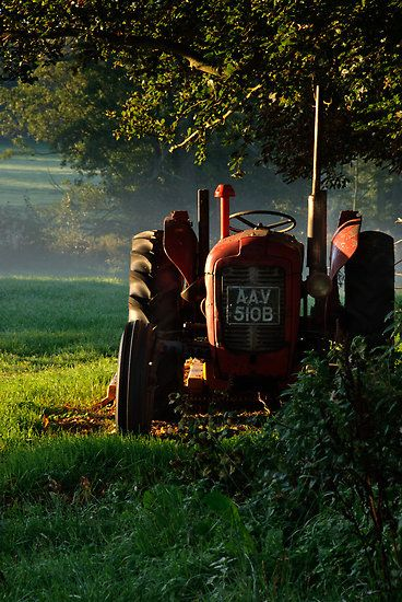 """Tractor in the morning light"" by Christopher Cullen"
