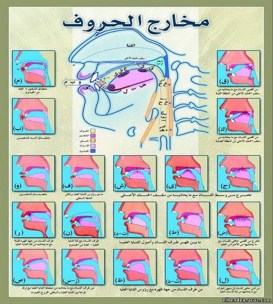 صور توضيحية النون المشددة والميم المشددة في القران بحث Google Arabic Kids Learn Arabic Language Arabic Alphabet For Kids