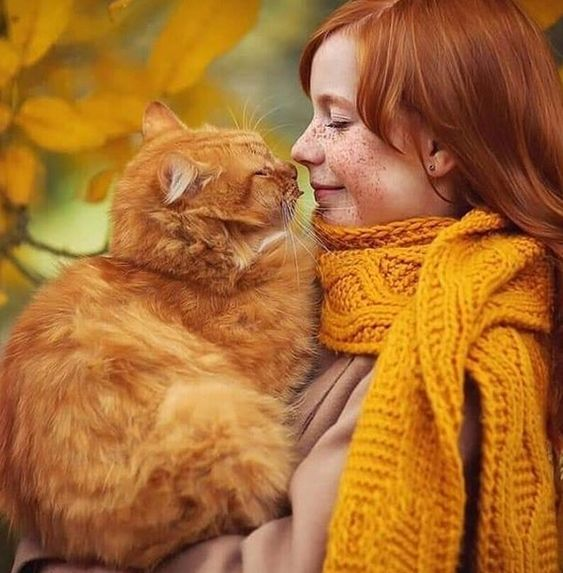 Top 50 Autumn Cat Names | PetPress