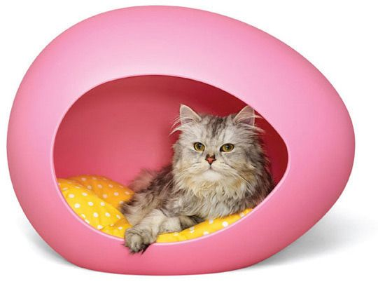 Awesome cat egg bed!!