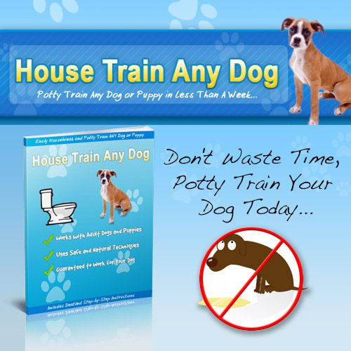 Learn The Secrets To Completely Potty Train Any Dog Or Puppy