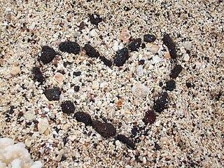 #beach #love