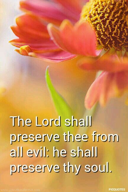psalm 121:7 kjv The Lord shall preserve thee from all evil: he shall preserve thy soul.