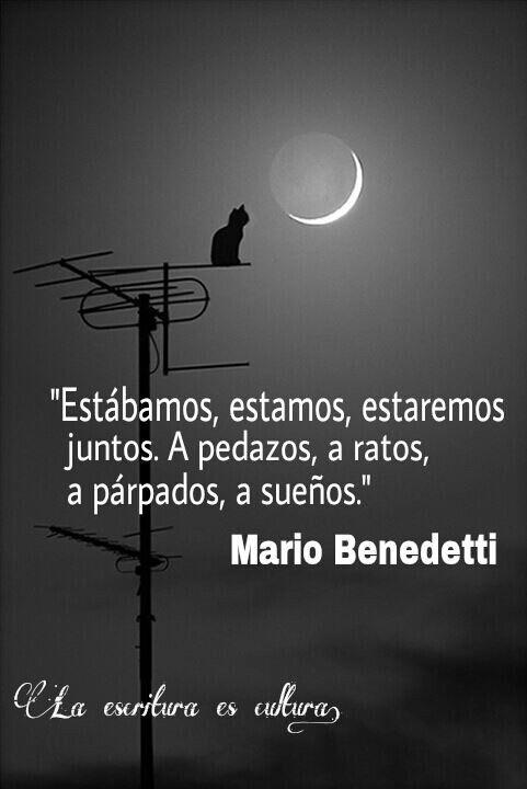 Estábamos, estamos, estaremos juntos A pedazos, a ratos, a párpados, a sueños #Benedetti
