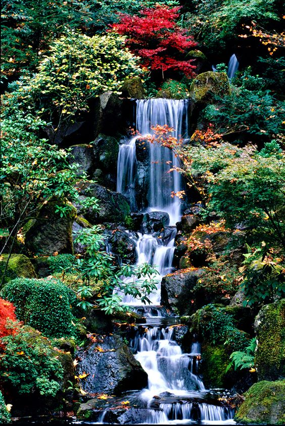 Garden waterfall japanese gardens and waterfalls on pinterest for Garden fountains portland oregon