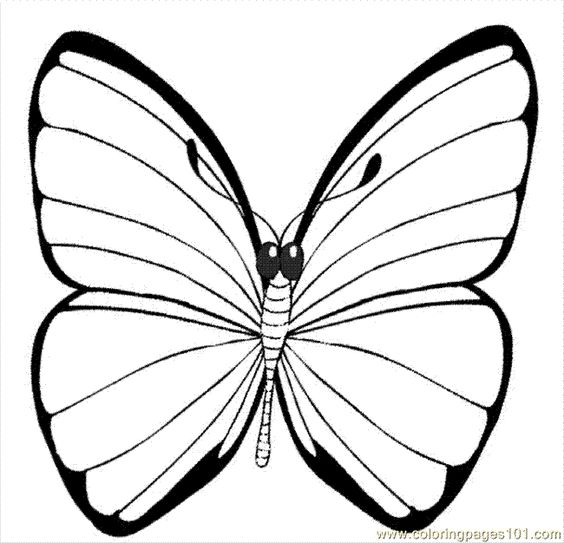 common worksheets butterfly printables a printable picture of a butterfly free printable coloring page - Butterfly Printable Coloring Pages