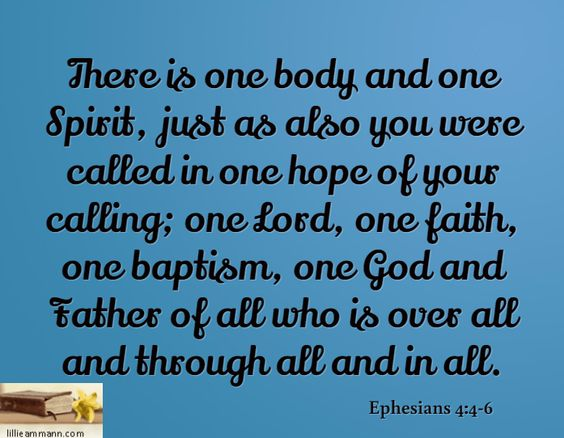 There is one body and one Spirit, just as also you were called in one hope of your calling; one Lord, one faith, one baptism, one God and Father of all who is over all and through all and in all. / Ephesians 4:4-6